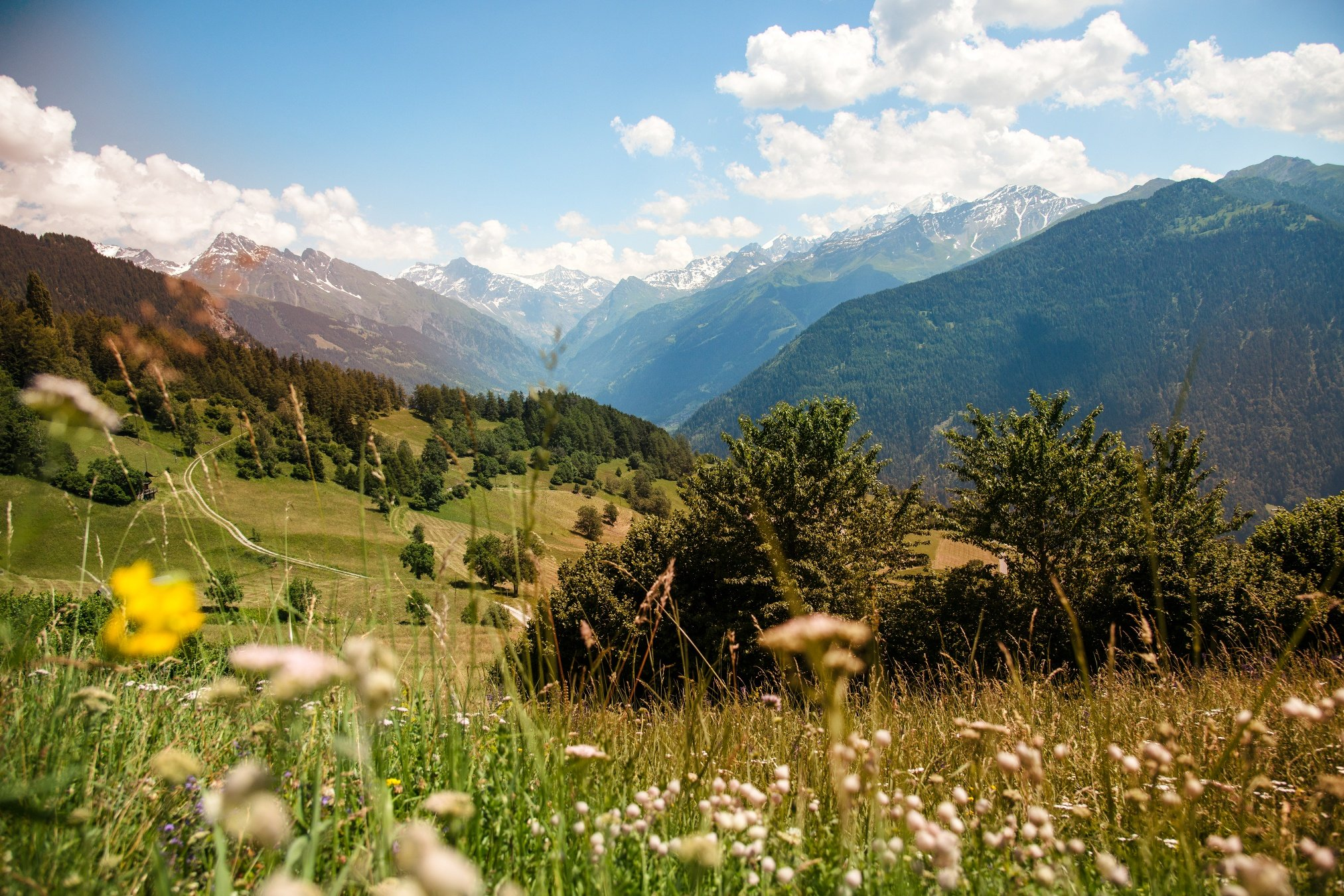 The col du Lein from Saxon takes you from the centre of the Rhone Valley up to 1,658 metres. This long climb of more than 14 kilometres is relatively unknown but imposing. The route then heads back down towards Vollèges and the Val de Bagnes.
