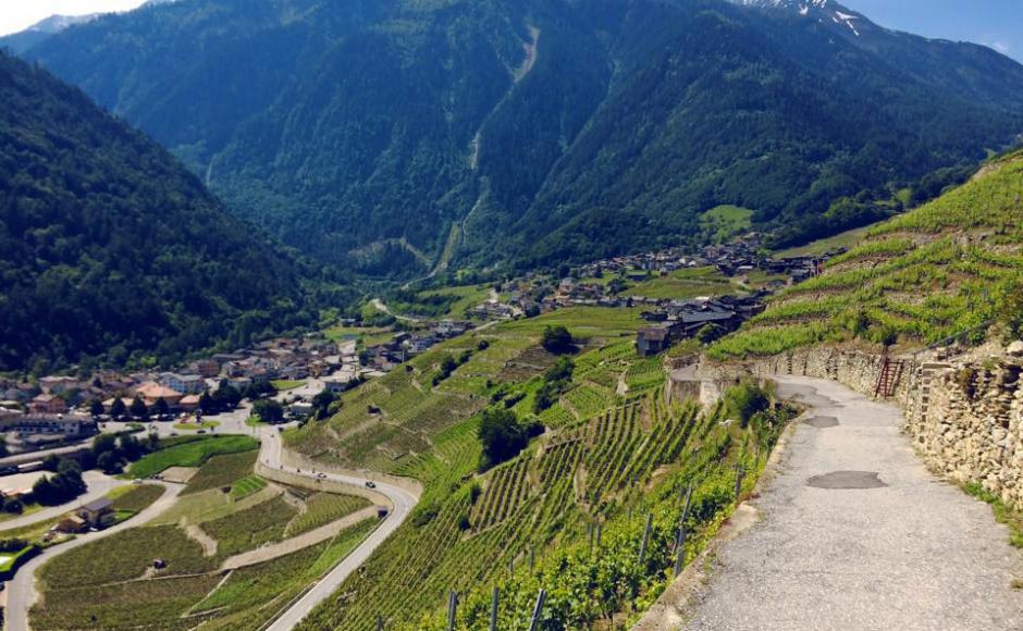 Chemin des vignes en terrasses autour de Martigny Itinéraires à Martigny |  Valais Suisse