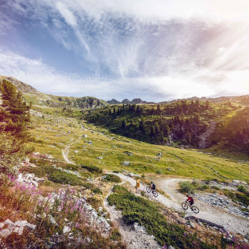 Mountainbike holidays «Valais Alpine Bike»